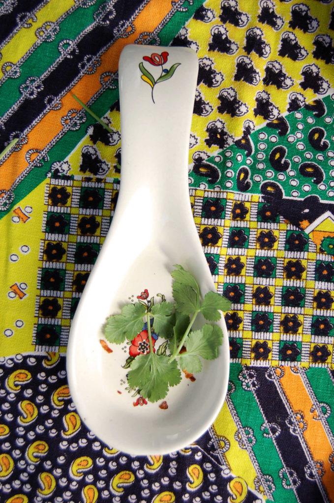 whole_food_plant-based_black_bean_soup_spoon_cilantro