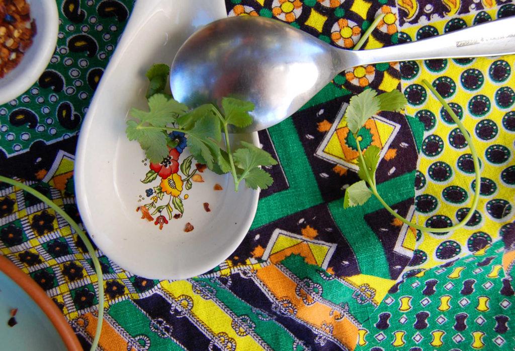 whole_food_plant-based_black_bean_soup_cilantro