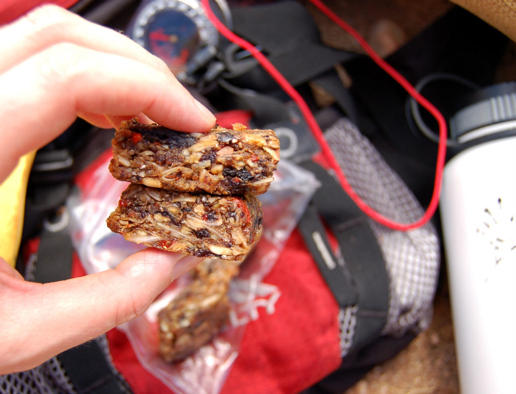 plant_strong_Protein_squares_hike_hand