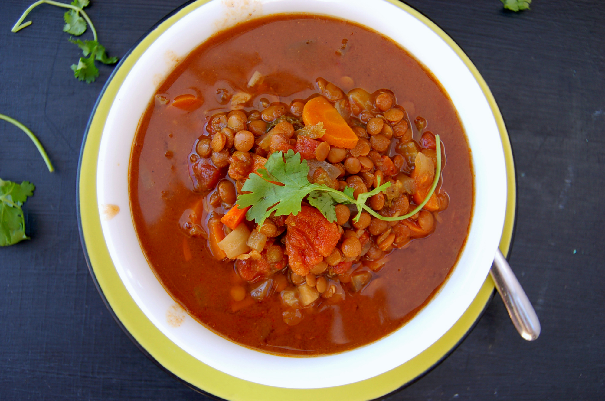 moroccan_lentil_stew_top_shot