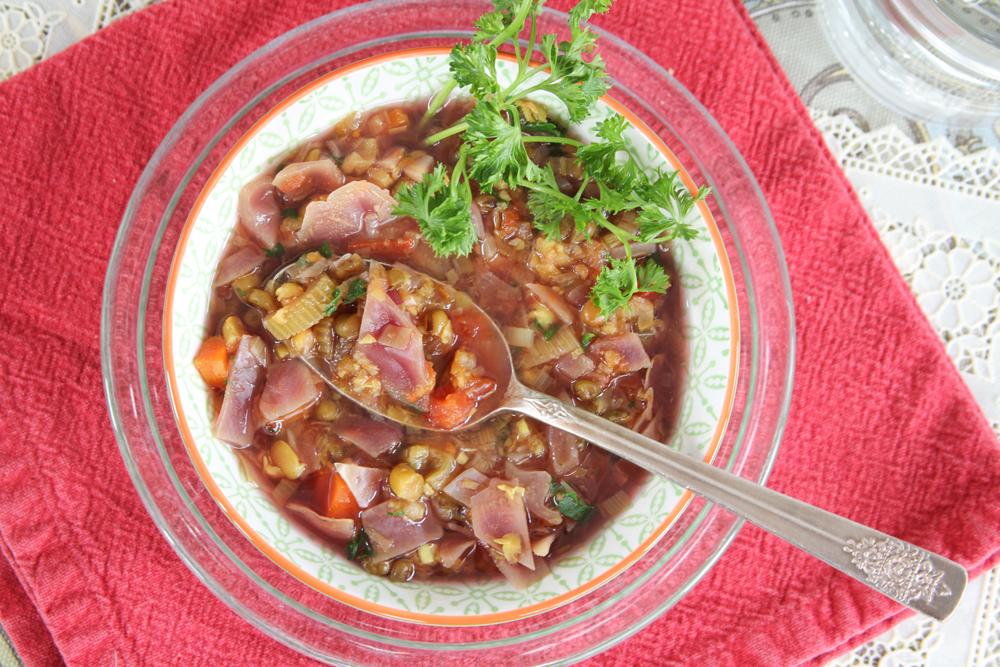 6_whole_food_plant_based_turmeric_mung_bean_soup_top_shot