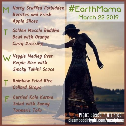 EarthMama-mar-22-2019-menu