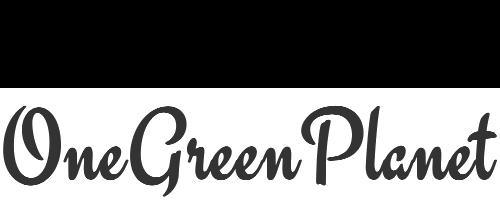 https://files.cleanfooddirtygirl.com/20201210191842/OneGreenPlanet-1.png
